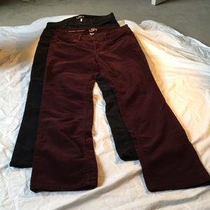 Ann Taylor Loft Modern Straight pants